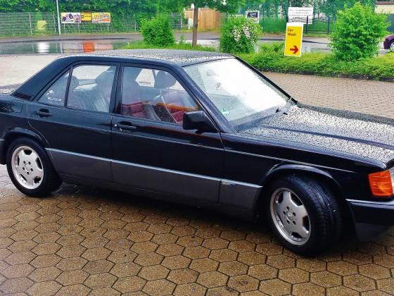 Blackie im Regen/Monheim NRW