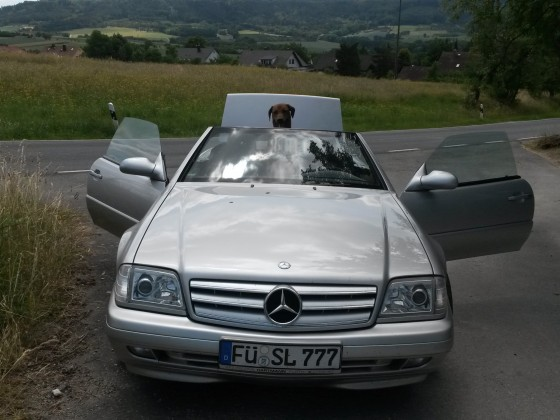 Das beste Auto das ich je gekauft habe ( 12 Jahre kpl ohne Probleme)